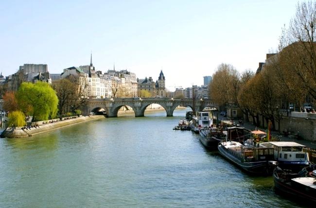 Paris,_Seine_River_and_Pont_Neuf,_Ile_de_La_Cité