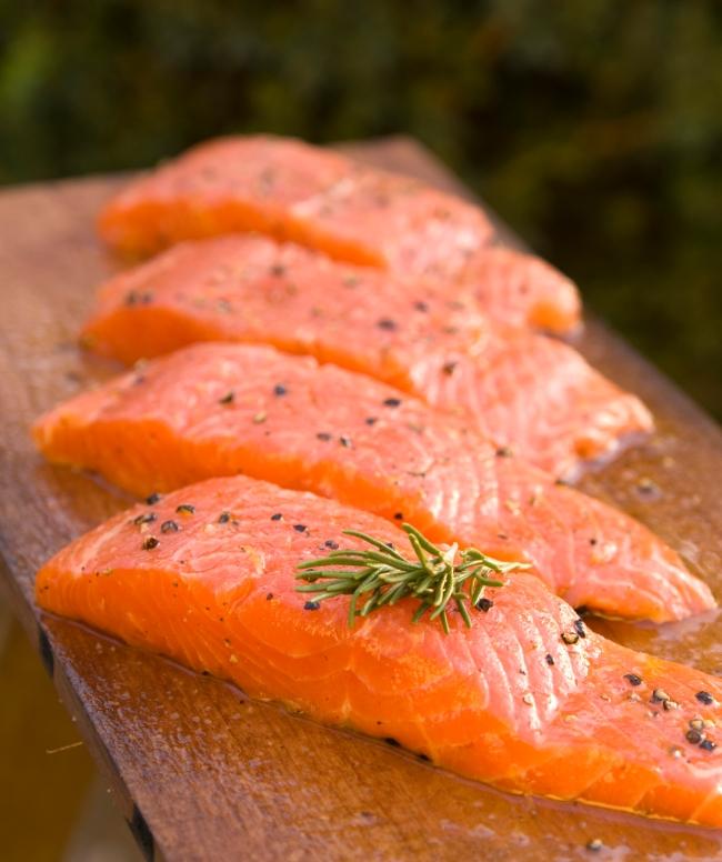 salmon_6